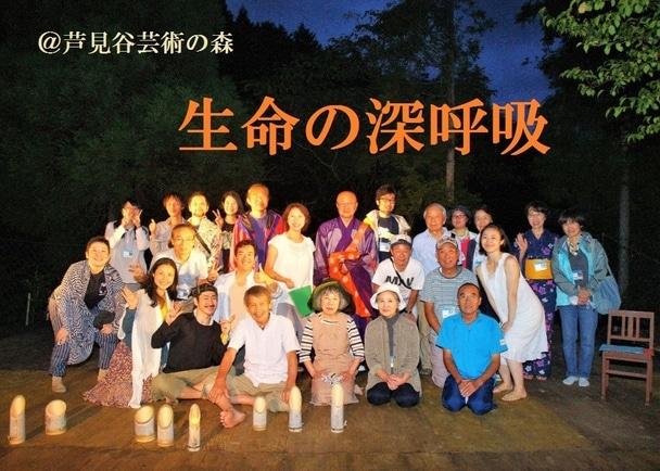 京都・京北5000坪の杉林を、身体と心が生き返る ◆芦見谷芸術の森◆としてオープンさせたい!
