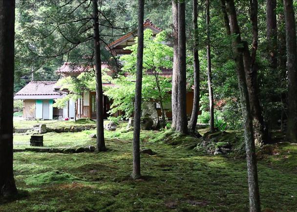 FOREST of WISDOM 叡智の杜を守り、育てる 世界に誇る叡智が集う杜を創造する「叡智の杜プロジェクト」
