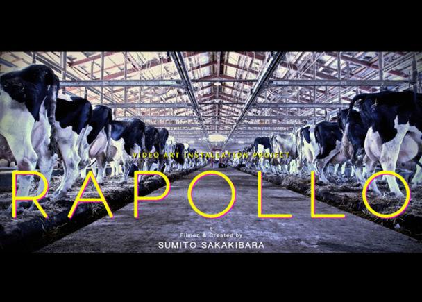 〜偉才・榊原澄人が到達した実写映像の世界〜『RAPOLLO』
