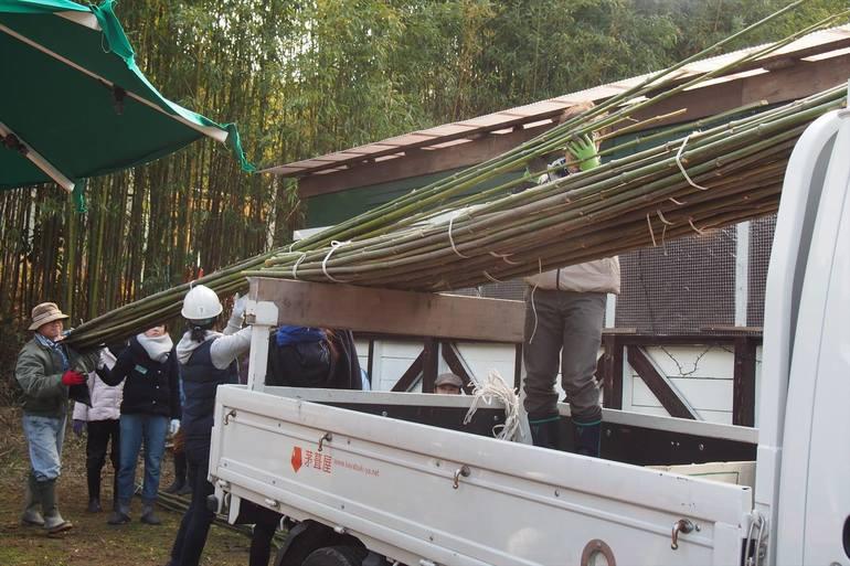 茅葺古民家周辺の竹林で行った竹刈りの様子。竹は茅葺において茅葺屋根の重要な構造部材になります。