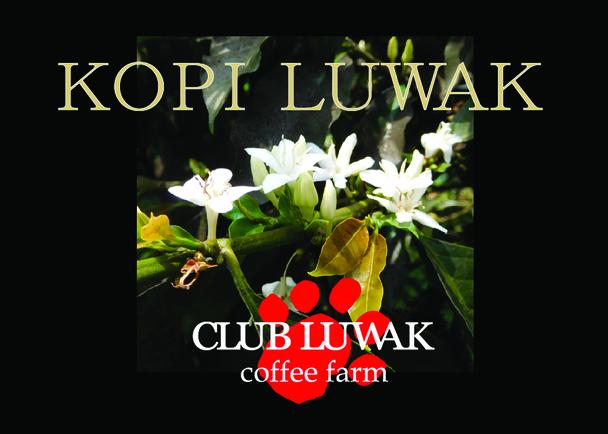 """インドネシアに造った農園で生産する""""本物のルワックコーヒー""""を味わう会員制クラブ設立プロジェクト!"""