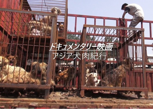 「アジア犬肉紀行」 記録映画仕上げ費用支援プロジェクト