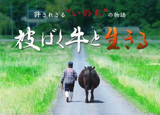 原発事故で故郷を奪われた農家の刹那を描いた映画『被ばく牛と生きる』の配給宣伝にご支援ください!