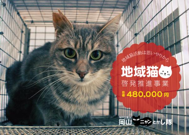 「地域猫活動は思いやりの心から」地域猫啓発推進事業