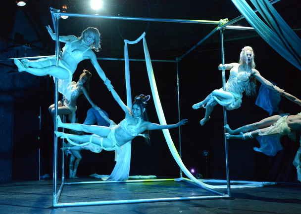 革新的ダンスショーケース『PeepShow』を世界最大級のポールダンスの祭典Expo2015へ!