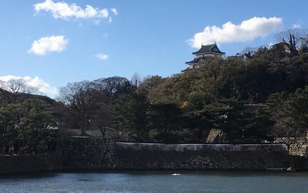 暴れん坊将軍・徳川吉宗の故郷、和歌山城が街のシンボル