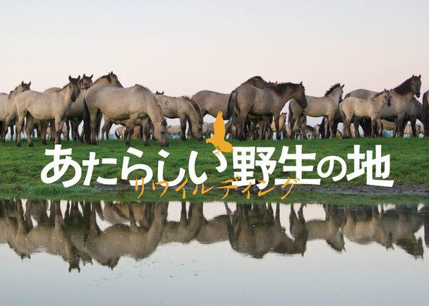 地球再生のヒントが込められた映画『あたらしい野生の地−リワイルディング』を全国に届けたい!上映応援プロジェクト!