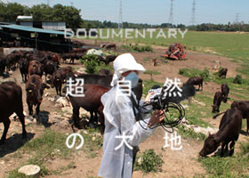 ドキュメンタリー映画「超自然の大地」 放射能汚染と戦い、生きる、福島の農家さん達