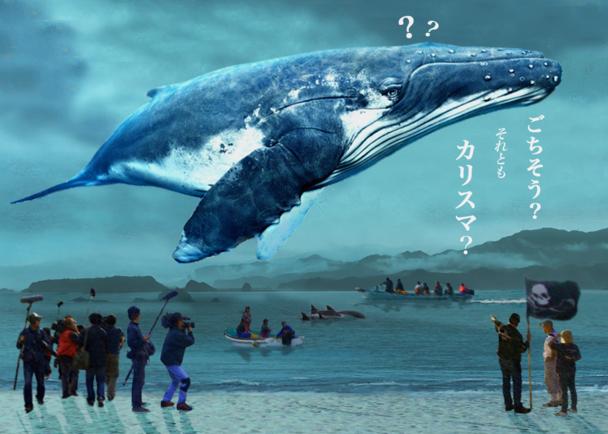 クジラを巡る世界的論争描く、日本人監督初の本格ドキュメンタリー映画